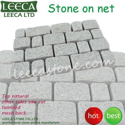 Decorative paving stone on net