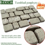 Garden paver joint paving stone