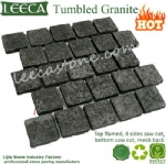 Black paving stone stepping stones